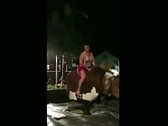 Fucked Up Milf Rides The Bull Topless